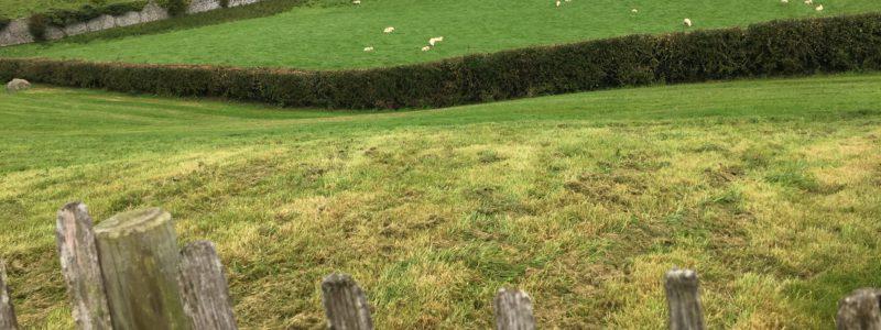 agricultura conservación avac valladolid