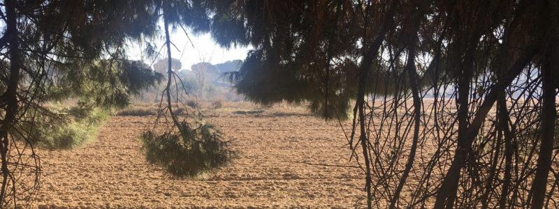 agricultura conservación avac